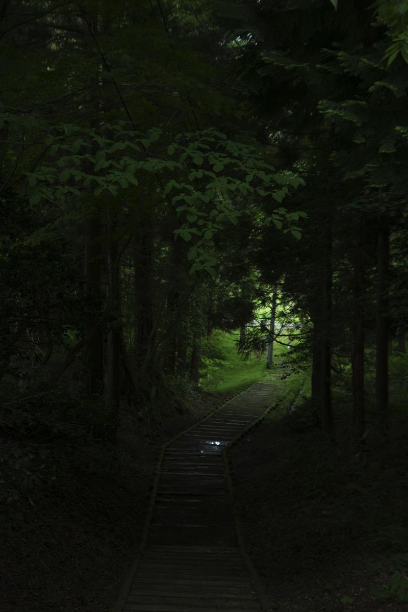 Ussoutoshitamori