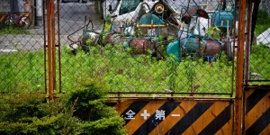 bsN612_aretasizaiokiba